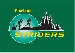 Pineland Striders