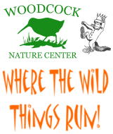 Where the Wild Things Run at Woodcock Nature Center