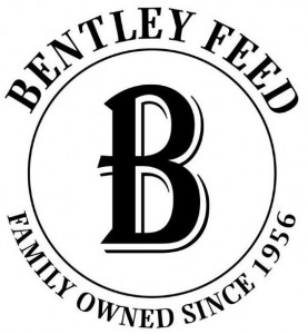 Bentley Feed