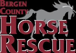 Run For The Horses  10K, 5K, 1 Mile (Fun Run) - Virtual 2021