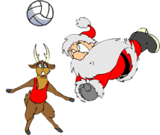 Team Doogie's Holiday Volleyball Tournament