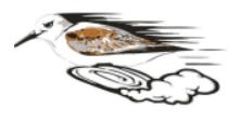 Solana Pacific Sandpiper Sprint