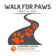 Walk for Paws (Virtual Event)