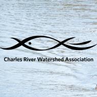 VIRTUAL Run of the Charles: Boston's Premier Paddling Race