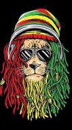 Arkansas Rasta Fun 5k Run/Walk & Reggae Jam Down