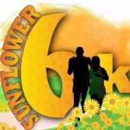 Sunflower 6K