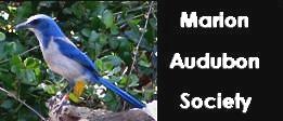 Marion Audubon Society