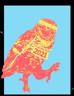 Owl by Yourself Virtual Run