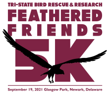 Feathered Friends 5K