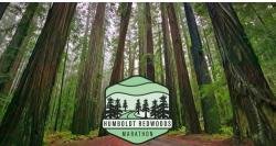 2021 Humboldt Redwoods Logo