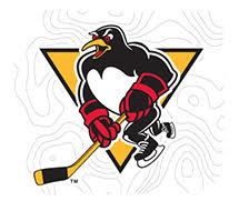Penguins 5k