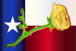 2021 Yellow Rose Rambler