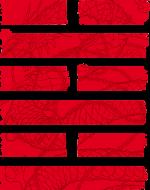 Snake Eyes: Join the Arashikage Challenge