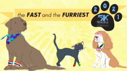 The Fast and the Furriest 5K