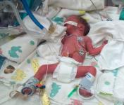 Help Me Grow Run and Fun for Preemies