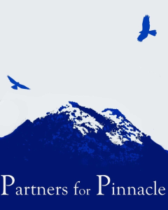 Partners for Pinnacle