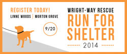 Run for Shelter 5K