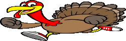 Northshore Medical Center Turkey Trot 8K Run/Walk