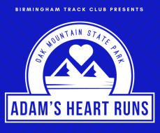BTC Adam's Heart Runs