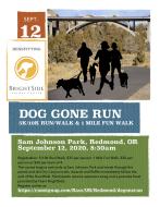 Dog Gone Run