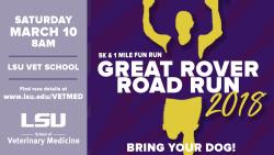 Hill's 25th Annual Great Rover Road Run