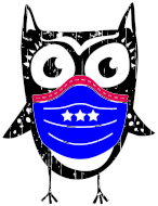 Virtual Night Owl Run