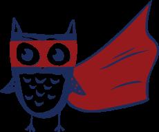 Night Owl Run