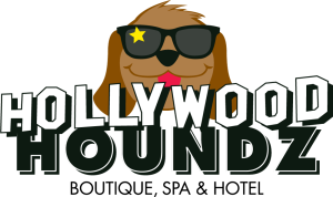 Hollywood Houndz