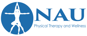 Nau Physical Therapy and Wellness