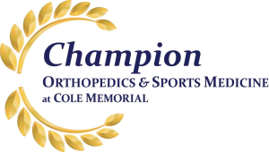 Champion Orthopedics