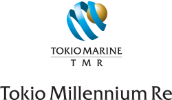 Tokio Millennium  Re Triathlon
