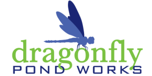 Dragon Fly Pond Works