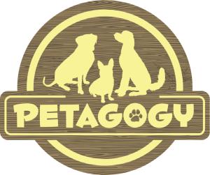 Petagogy