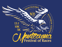 Montezuma Festival of Races