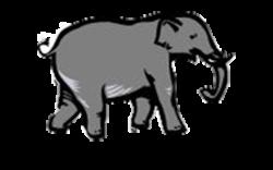 The Elephant Run 5K and Kids' Run