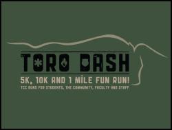 Toro Dash
