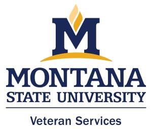 MSU Veteran Services