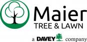 Maier Tree