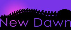 New Dawn Chiropractic