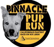 Virtual Pinnacle Pup Run