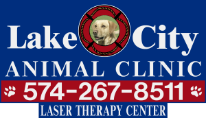 Lake City Animal Clinic