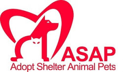 ASAP's 4th Annual 5K Howl-O-Ween Walk for the Animals