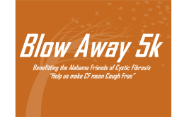 The Blow Away 5K