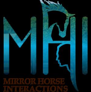 Mirror Horse Interactions