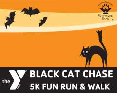 The Black Cat Chase