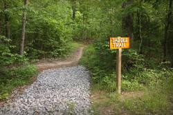 Haw Ridge Trail Race