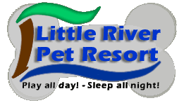 Little Pet Resort
