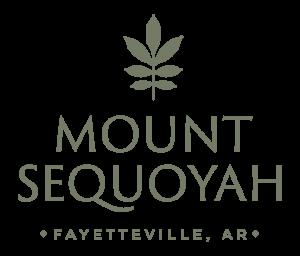 Mt. Sequoyah Center