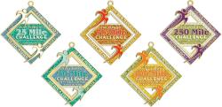 BlingRunners 500 Miles in 2016 Challenge