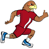 Falcon 5k and 1 mile fun run